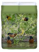 Orioles At The Pool Duvet Cover