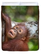 Orphan Baby Orangutan Duvet Cover