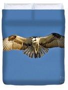 Osprey Hovering Duvet Cover