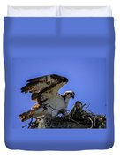 Osprey In The Nest Duvet Cover