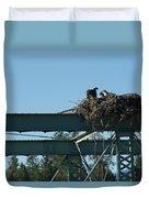 Osprey Nest With Mom And Chicks Duvet Cover