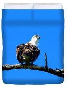 Osprey On A Branch Duvet Cover