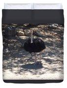 Ostrich Dance Duvet Cover
