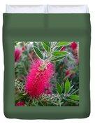 Our Bottlebrush Tree Duvet Cover