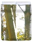 Outside Dafoi Triagex3 Art 1 Of 9  Duvet Cover