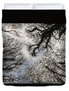 Overhead Trees In Exmoor, United Kingdom Duvet Cover