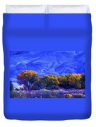 Owens Valley Fall Colors  Duvet Cover