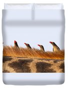Oxpeckers Duvet Cover