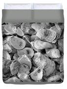 Oyster Shells Duvet Cover