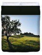 Pacific Coast Oak Malibu Creek Landscape Duvet Cover