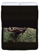 Pacific Giant Salamander On Mossy Rock Duvet Cover