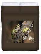 Pacific Treefrog Duvet Cover