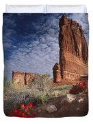 Paintbrush And The Organ Rock Duvet Cover by Tim Fitzharris
