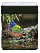 Painted Bunting Drinking Duvet Cover
