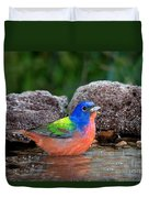 Painted Bunting Passerina Ciris In Water Duvet Cover