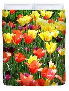 Painted Sunlit Tulips Duvet Cover