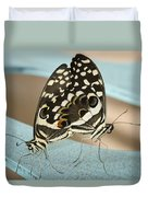 Pair Of Citrus Swallowtail Butterflies  Duvet Cover