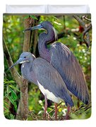Pair Of Tricolored Heron At Nest Duvet Cover