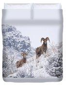 Pair Of Winter Rams Duvet Cover