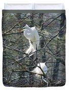 Paired Egrets At Lake Martin Louisiana Duvet Cover