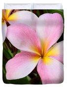 Palacious Pink Plumeria Duvet Cover