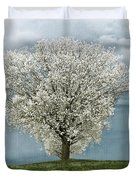 Pale White Tree On Cloudy Spring Day E83 Duvet Cover
