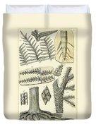 Paleozoic Flora, Calamites, Illustration Duvet Cover