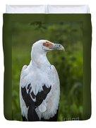 Palm-nut Vulture 2 Duvet Cover