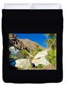 Palm Oasis On Borrego Palm Canyon Trail In Anza-borrego Desert Sp-ca Duvet Cover