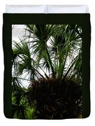 Palm Tree In Curacao Duvet Cover