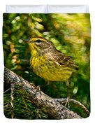 Palm Warbler Pictures 38 Duvet Cover
