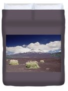 Pampas Grass And Old Lava Flow Llaima Duvet Cover