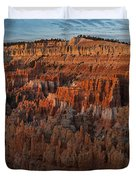 Panorama Of Bryce Canyon Amphitheater Duvet Cover
