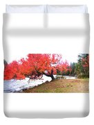 Panorama Of Red Maple Tree, Muskoka Duvet Cover