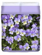 Pansy Flowers In Spring Background Duvet Cover