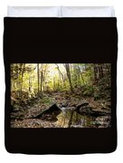 Panther Branch In Fall Duvet Cover