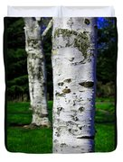 Paper Birch Trees Duvet Cover