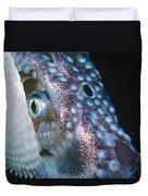 Paper Nautilus Port Phillip Bay Duvet Cover