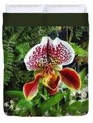 Paph Fiordland Sunset Orchid Duvet Cover