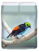 Paradise Tanager Duvet Cover
