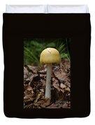 Parasol Mushroom Macrolepiota Sp Duvet Cover