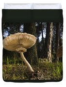 Parasol Mushrooms Pair In Forest Spain Duvet Cover