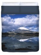 Parincota Lauca National Park Andes Duvet Cover