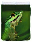 Parrot Snake Eating Frog Eggs Duvet Cover
