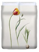 Parrot Tulip Duvet Cover by Iona Hordern