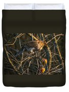 Partridge In An Apple Tree Duvet Cover