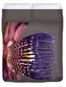 Passiflora Alata - Passion Flower - Ruby Star - Ouvaca Duvet Cover