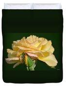 Pastel Rose Ruffles Duvet Cover