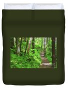 Path In The Forest Duvet Cover by Jill Lang