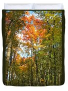 Path Through The Woods Duvet Cover